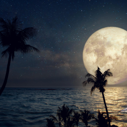 August 2020's Sturgeon Moon Meaning And When To See It At It's Fullest